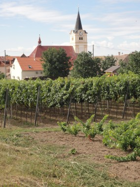 Czech Republic, wine travel